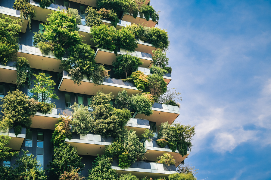 building with trees and plants