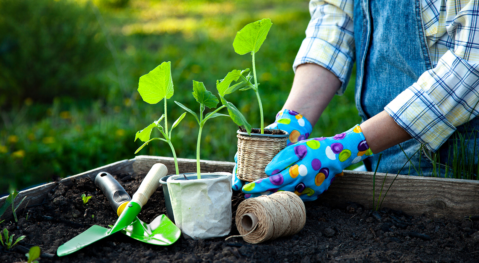 4 Ways to Make Your Home More Environmentally Friendly in Florida